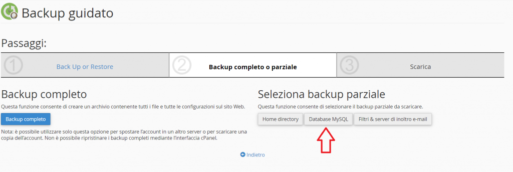 Backup Parziale Database