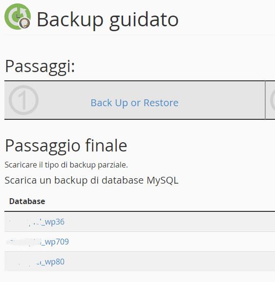 Scaricare Backup Parziale Database