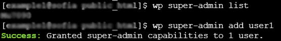 Super Admin Wp Cli