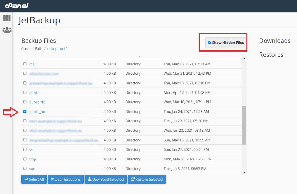 File Backups Download Or Restore Selected