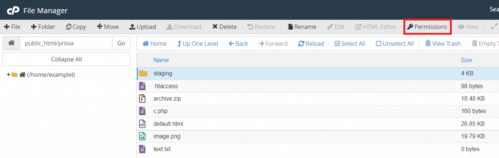 File Manager Permissions