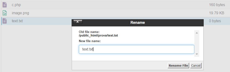 Rename New File Name