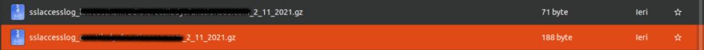 Wordpress Hacked Access Log